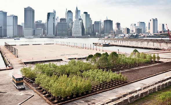 Streetscapes, Sidewalks and Skyscrapers, Oh My!: Urban Design Events in New York