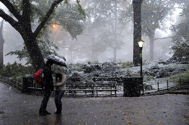 Power Is Slowly Restored to Tri-State Region After October Snowstorm