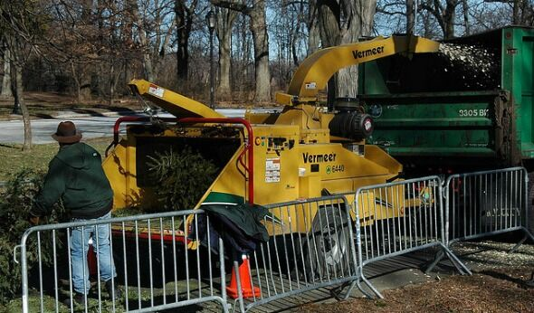 Go Green: Recycle Your Christmas Tree at MulchFest