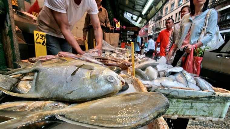 Fresh Fish! Where and When to Get the Best Catch in NYC