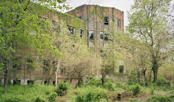 Take A Tour Of NY's Forgotten 'North Brother Island'