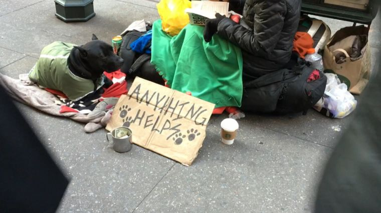 HOMELESS STUMBLES & SOLUTIONS