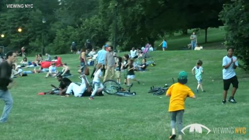 CITY PARKS & UNSAFE LEAD LEVELS