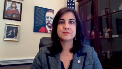 REP. MALLIOTAKIS: SEND THE FEDS TO HELP THE NYPD