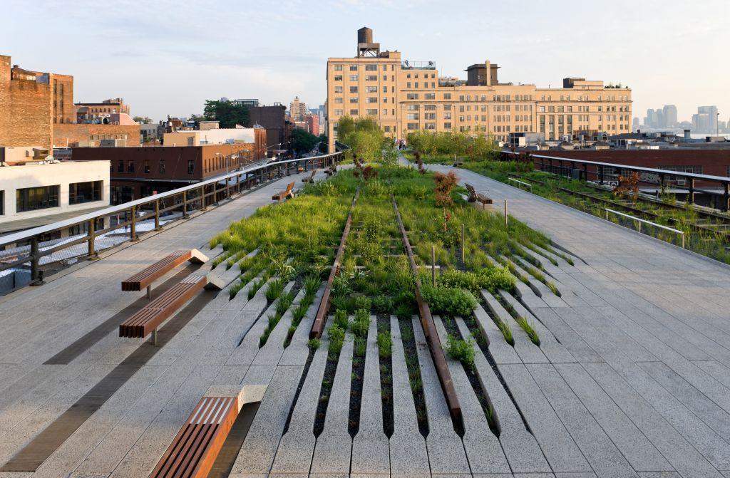 Highline grasslands planting. Photo courtesy Friends of the Highline.