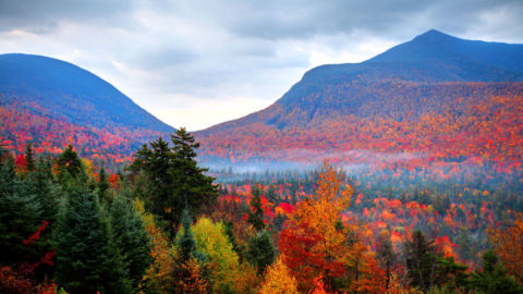 Autumnwatch in New England – State by State Features