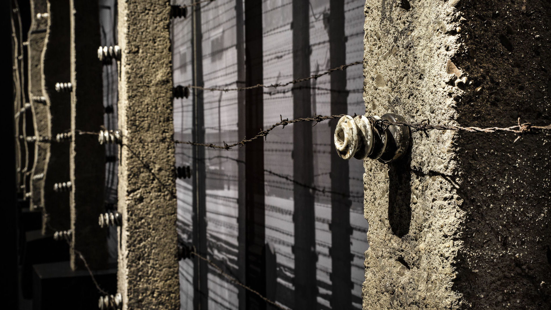 Barbed wire and concrete fencing.