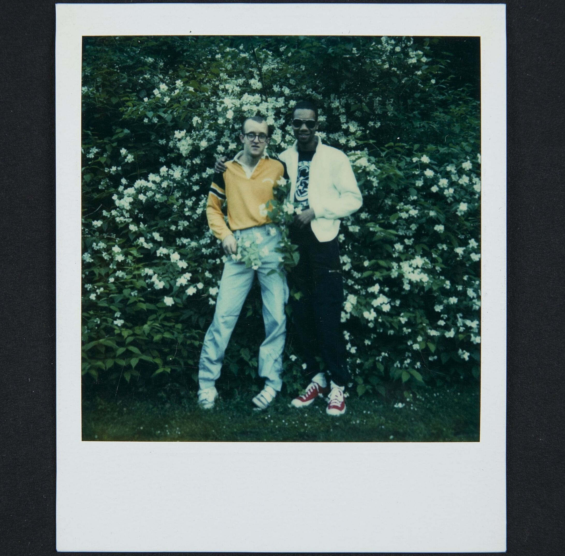 A white man in jeans and orange polo and glasses and Black man in black pants, black and white t-shirt and white jacket and sunglasses stand close together and backed into a very large bush flowering with white flowers.